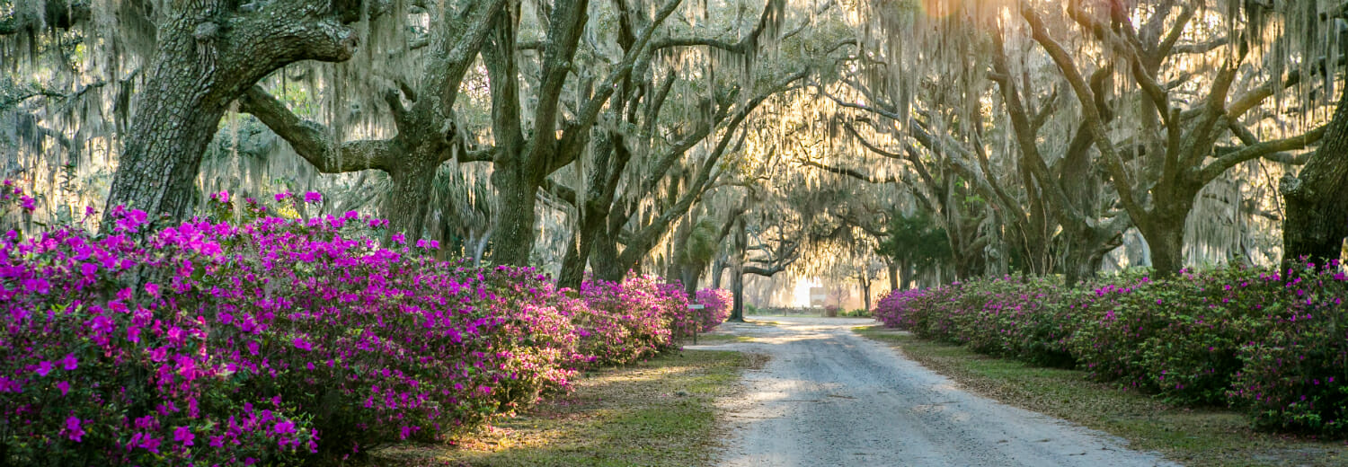 HOW VISIT SAVANNAH USED POLLS IN INSTAGRAM STORIES TO CREATE AN AUDIENCE-DIRECTED TOURISM VIDEO