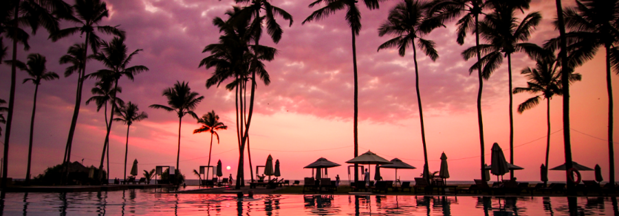 Beach-sunset-palmtrees