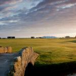 Landscape of bridge and grassy area in Scotland