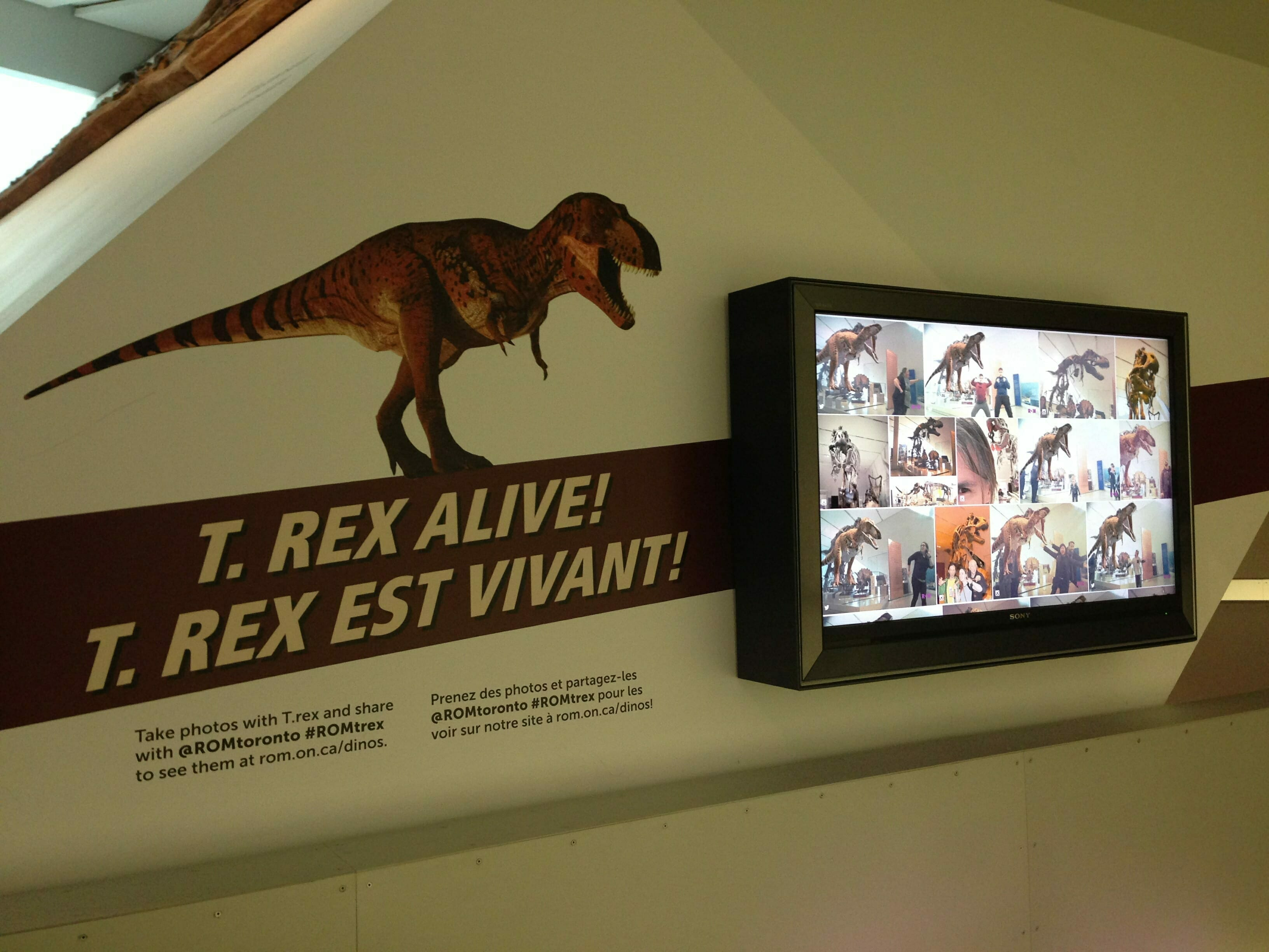 Trex comes alive at the ROM