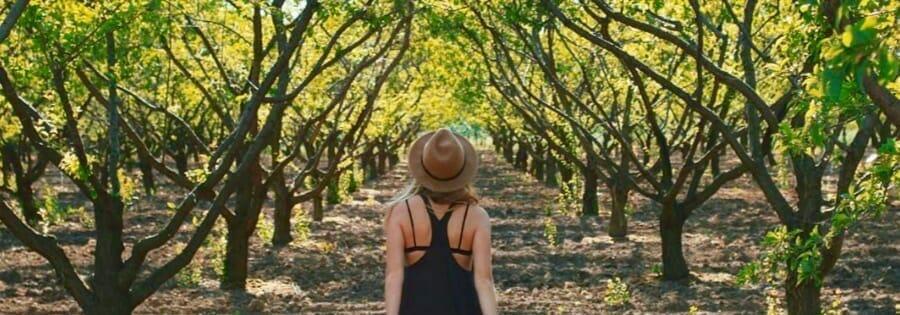 girl-in-vineyard