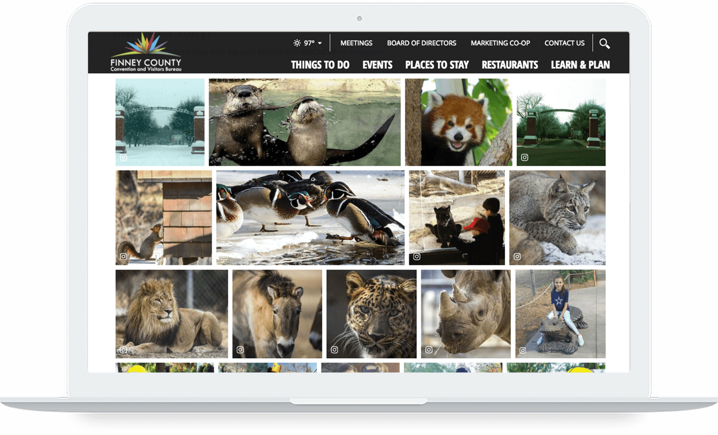 Computer screen showing galleries featuring animals on Finney County's website